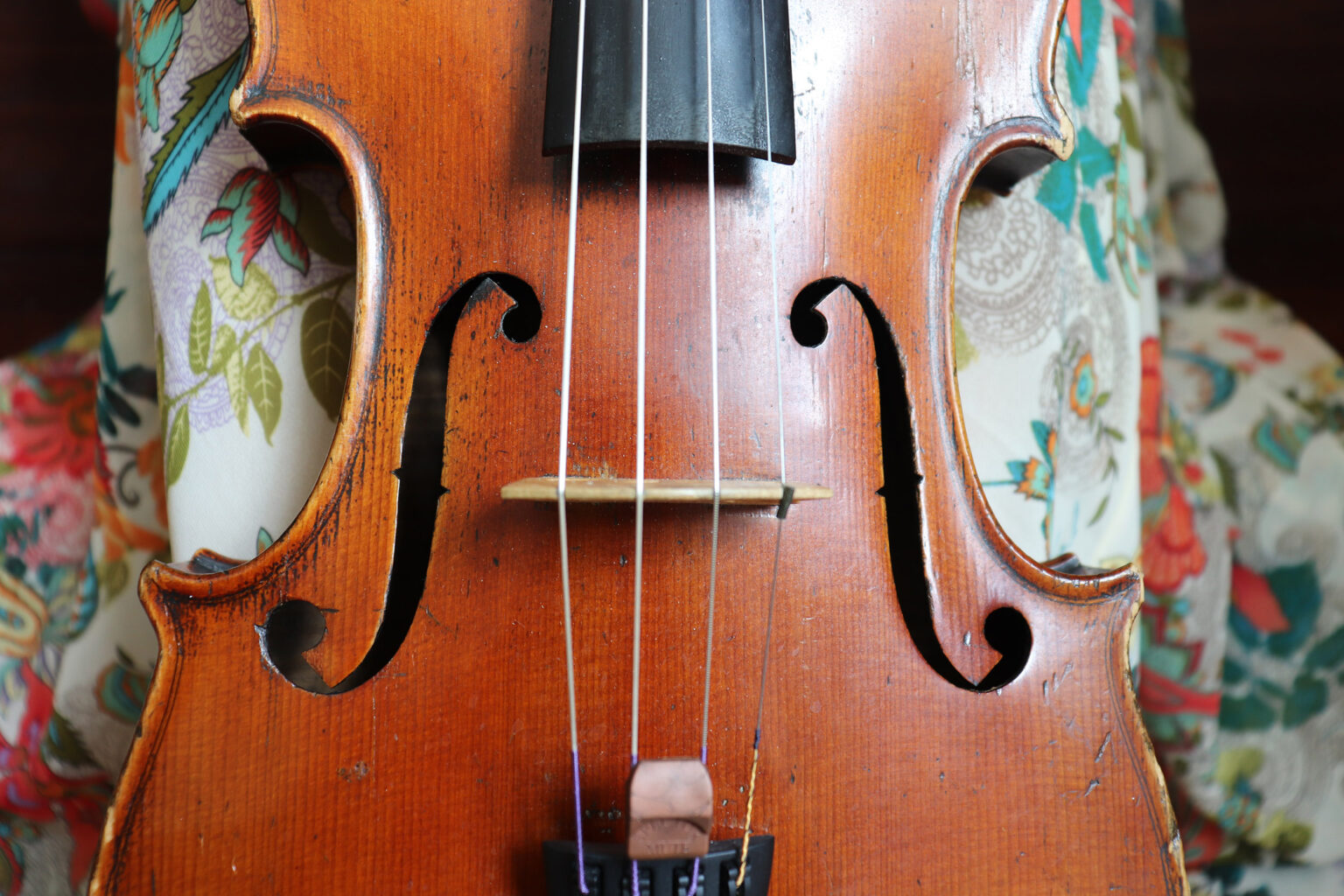 viola and dress